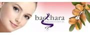 Bacchara